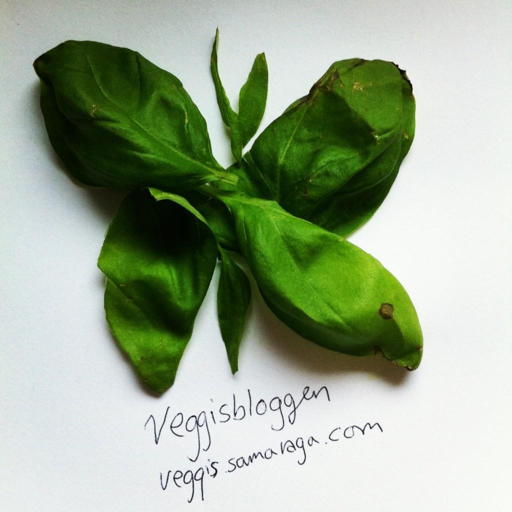 veggislogo